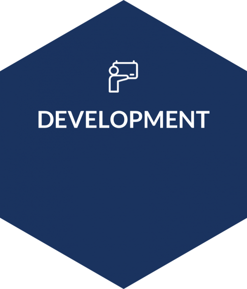 esagono-sviluppo-2x-ENG